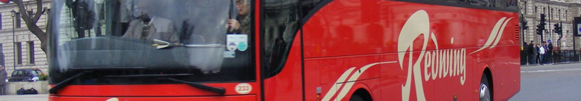 redwings-coach